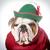 funny dog stock photo © willeecole