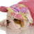 seven week old english bulldog puppy dressed up in pink hat and sweater stock photo © willeecole