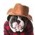 стране · собака · английский · бульдог · красный - Сток-фото © willeecole
