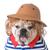 dog wearing clothing stock photo © willeecole