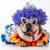 kutya · pötty · fehér · bika · mosoly · boldog - stock fotó © willeecole