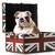 chien · grande-bretagne · pavillon · fond · drôle · succès - photo stock © willeecole