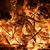 incendies · de · forêt · feu · bois · nuit · ciel · arbres - photo stock © winterling
