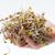 gezonde · voeding · vers · geïsoleerd · witte · abstract · blad - stockfoto © wjarek