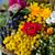 gyönyörű · virágok · gyógynövények · virág · rózsa · nők - stock fotó © wjarek