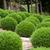 giardino · scenario · vicino · view · fiore - foto d'archivio © wjarek