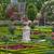 frans · tuin · rozen · hemel · bloem · voorjaar - stockfoto © wjarek
