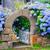 подробность · дома · Франция · цветок · здании · деревне - Сток-фото © xantana