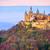 castelo · Alemanha · de · manhã · cedo · luz · céu · floresta - foto stock © Xantana