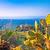 île · idyllique · caillou · plage · paysage - photo stock © xbrchx