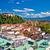 city of ljubljana aerial view stock photo © xbrchx