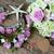 argila · flor · casamento · feito · à · mão · noiva · mão - foto stock © xuanhuongho