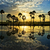 cloudscape and palm trees in silhouette reflect on water in sunr stock photo © xuanhuongho