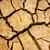 sequía · tierra · cambio · climático · caliente · verano · heno - foto stock © xuanhuongho