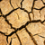 drought land, climate change, hot summer stock photo © xuanhuongho