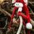 año · mono · de · punto · juguete · símbolo · hecho · a · mano - foto stock © xuanhuongho