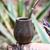 paraguay yerba mate photo stock © xura
