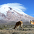 вулканический · пейзаж · сумерки · центральный · облака · горные - Сток-фото © xura