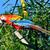 mavi · sarı · Namibya · Afrika · kuş · hayvan - stok fotoğraf © xura