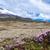 volkan · Ekvador · atış · mavi · bulutlar - stok fotoğraf © xura