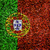 Portugal Flag color grass texture background stock photo © yanukit