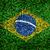 Brazil flag texture on green grass in the garden for background stock photo © yanukit
