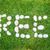 green message with stone stock photo © yanukit