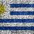 Uruguay Flag color grass texture background stock photo © yanukit