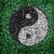 Yin yang symbolic on grass texture background balance concept be stock photo © yanukit