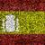 Sweden Flag color grass texture background stock photo © yanukit