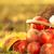vermelho · suculento · maçãs · grama · verde · comida · grama - foto stock © yaruta