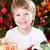 feliz · sorridente · criança · natal · decorado · árvore · de · natal - foto stock © Yaruta