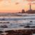 голубь · пород · центра · закат · природы · морем - Сток-фото © yhelfman