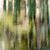 ミラー · 湖 · ヨセミテ国立公園 · ヨセミテ · 谷 · 公園 - ストックフォト © yhelfman