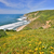 pacific ocean from tomales point trail point reyes national seashore stock photo © yhelfman