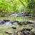 vízesés · gyönyörű · trópusi · park · híres · turisztikai · attrakció - stock fotó © Yongkiet