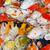 kleurrijk · veel · koi · karper · samen - stockfoto © Yongkiet
