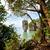 表示 · 海 · 空 · 美しい · 自然 - ストックフォト © yongkiet