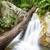 kicsi · gyönyörű · vízesés · erdő · Phuket · Thaiföld - stock fotó © yongkiet