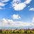 céu · belo · natureza · paisagem · brilhante · blue · sky - foto stock © Yongkiet