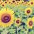 vintage · estilo · Blur · girasol · muchos · flor · amarilla - foto stock © Yongkiet