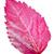 розовый · лист · гибискуса · изолированный · белый · снежинка - Сток-фото © yongkiet