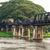 Bridge over the River Kwai stock photo © Yongkiet