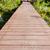 wood bridge in mangroves stock photo © yongkiet