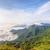 manana · forestales · parque · hermosa · paisaje · naturaleza - foto stock © Yongkiet