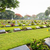 háború · temető · történelmi · műemlékek · világ · építkezés - stock fotó © yongkiet