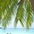 острове · синий · воды · фон · красоту · лет - Сток-фото © yuliang11