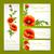 zöld · fű · virágok · rovarok · izolált · fehér · terv - stock fotó © yurkina