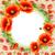 vetor · quadro · vermelho · branco - foto stock © yurkina