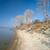Lighthouse stock photo © zastavkin